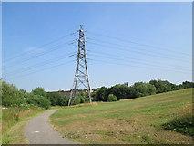 SJ9146 : Electricity pylon near Beverley Drive, Bentilee by David Weston