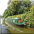TQ7353 : Narrowboat at East Farleigh by Paul Gillett
