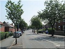 SJ9146 : Beverley Drive, Bentilee by David Weston
