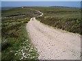 NH8637 : Estate track near Drynachan by Dorothy Carse