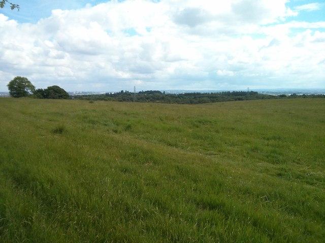 Fields on Craigend Hill