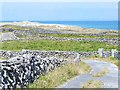 L9505 : Lane on the east side of Inishmaan by Oliver Dixon