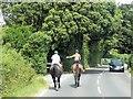 SZ3388 : Horse Riders on Hill Lane by David Dixon