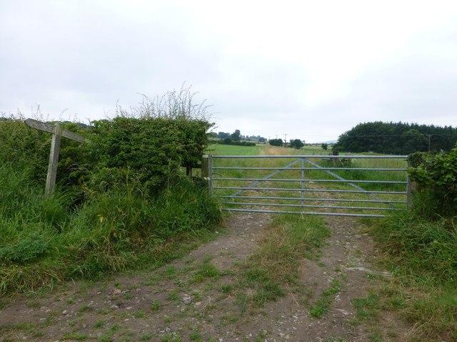 Public bridleway to Newton Greens