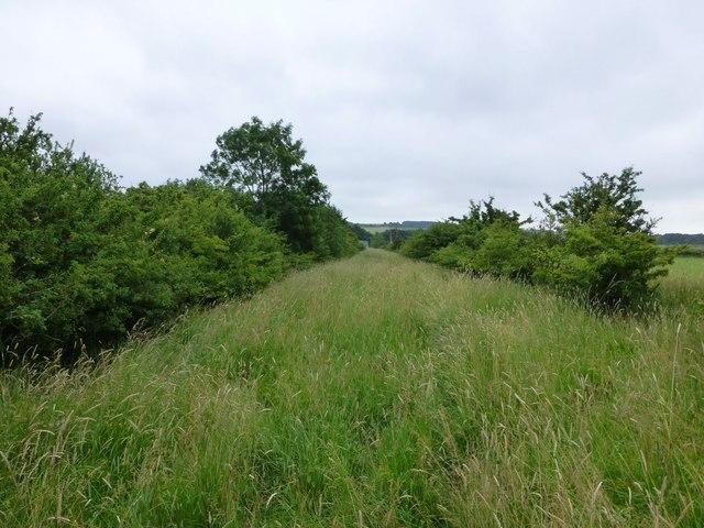 Public bridleway heading for Newton Low Steads Farm