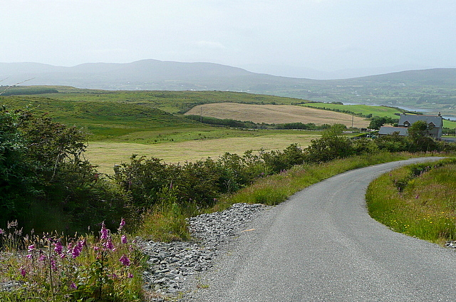 View down the Mine Road