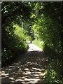 SX4361 : Lane past the church, Landulph by Derek Harper