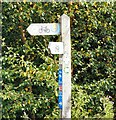 SJ9694 : Signpost at Green Lane Junction by Gerald England