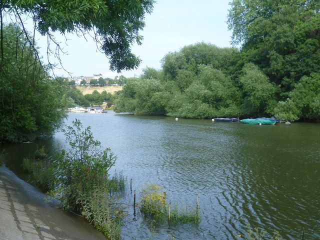 River Thames looking towards Richmond Hill