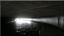 TQ3783 : View of the path through the tunnel under Bow Flyover from the Lea Navigation by Robert Lamb