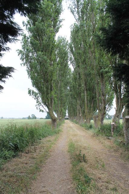 Drive to Hallgate Farm