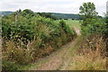 SO2646 : The Herefordshire Trail near Locksters Pool by Philip Halling