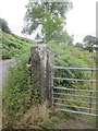 SN6805 : Stone Gatepost by Adrian Dust