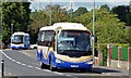 J1953 : Two Goldline coaches, Dromore (2013-1) by Albert Bridge