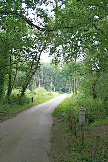 Drive to Arbrook Farm
