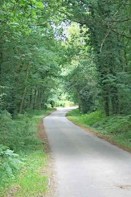 Arbrook Farm Drive towards Copsem Lane