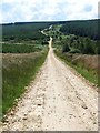 NY7997 : Switchback road through Redesdale Forest by Oliver Dixon