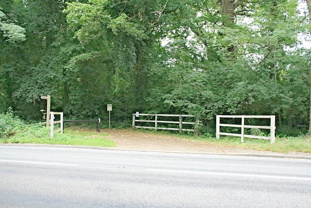 Equestrian crossing on Esher Common