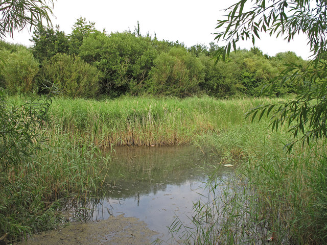 Old Silt Lagoon, Ingrebourne Valley, Berwick Woods, Rainham