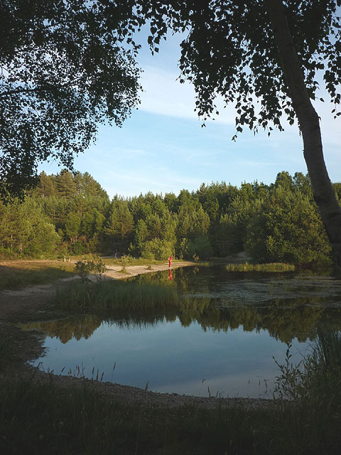 Gravel-pit Ponds, Culbin Forest