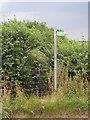 SP7322 : Footpath to Quainton by Philip Jeffrey