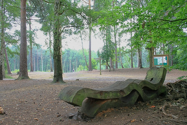 Sculpted wooden bench on Esher Common