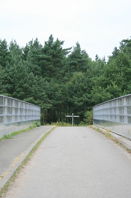 West Bridge, Esher Common