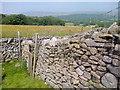 SD9763 : Dry Stone Wall by Mick Garratt