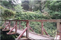 W6396 : Footbridge over Ross River by Hywel Williams