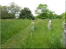 SU1012 : St James, Alderholt: churchyard (8) by Basher Eyre