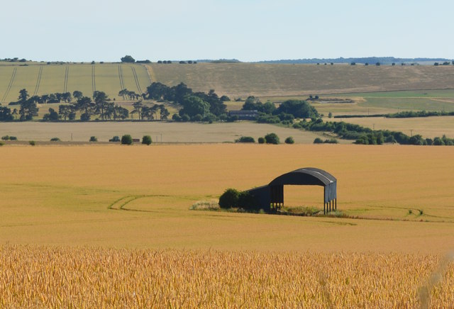 View over Wyke Down, near Sixpenny Handley, Dorset