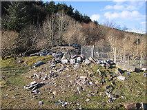 SN7573 : Ruins of Hafod mansion by Rudi Winter