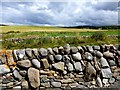 NS2003 : Dry stone wall, Dowhill by Kenneth  Allen