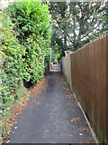 SE1321 : Footpath - Foxcroft Drive by Betty Longbottom