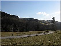 SN7573 : Hafod estate track by Rudi Winter
