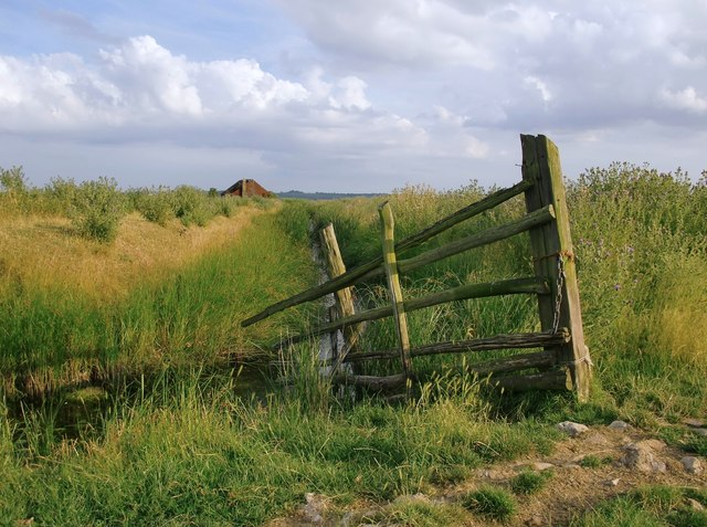 Towards Dowsett's Wick, Cliffe Marshes