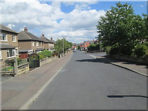 SE1421 : Scholey Avenue - looking towards Scholey Road by Betty Longbottom