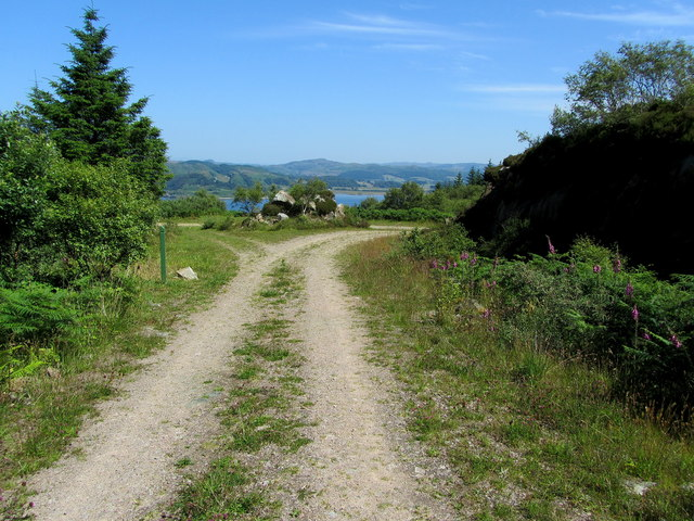 Junction of Forest Tracks above Crinan Harbour