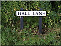 TM3083 : Hall Lane sign by Adrian Cable