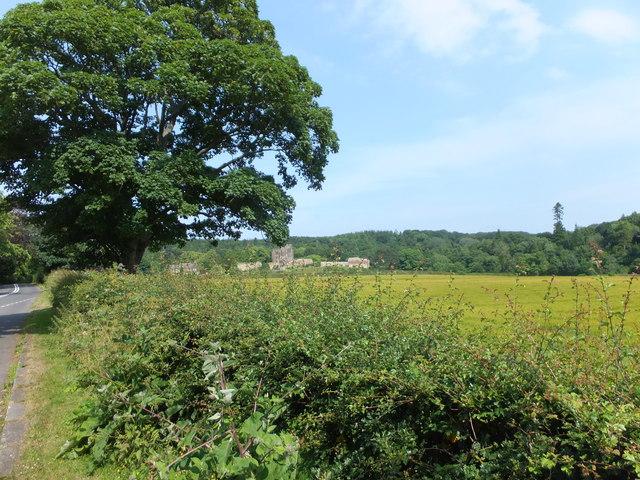 Towards Bothal