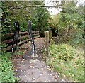 ST7282 : Bridge to the Frome Valley Walkway, Chipping Sodbury by Jaggery