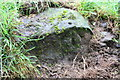 SD6188 : Benchmark on rock beside track above Beckside by Roger Templeman