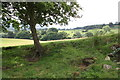 SD6188 : View from track from Beckside to Aikrigg by Roger Templeman