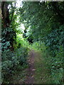 SP7820 : Footpath down to the Aylesbury ring by Philip Jeffrey