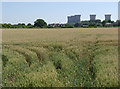 SK2928 : Cornfield and cooling towers by Alan Murray-Rust