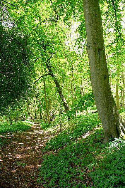 Towards Hambleden valley
