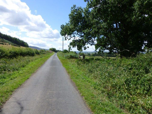 The road from South Cartington