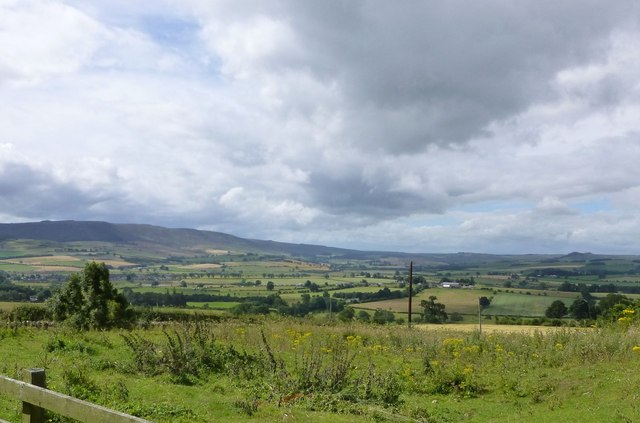View from Cartington