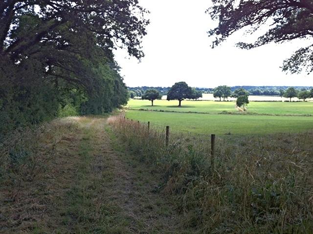 Farm track to accommodation bridge