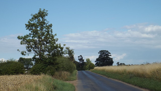 Country road near Ware, Hertfordshire